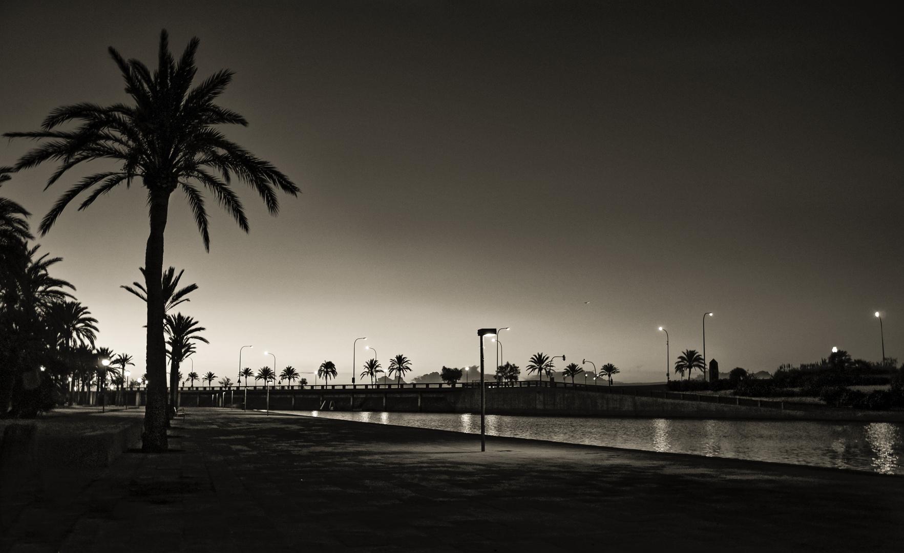 El parque del mar