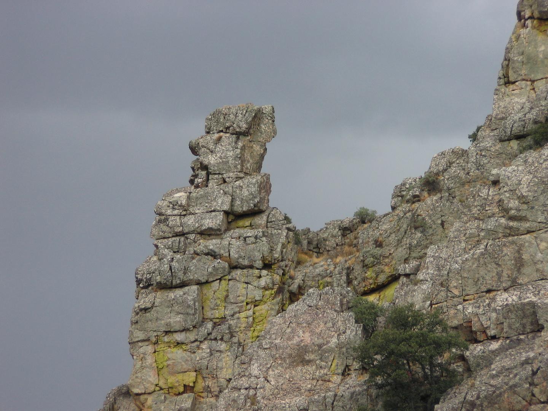 El pedestal del buitre de Monfragüe