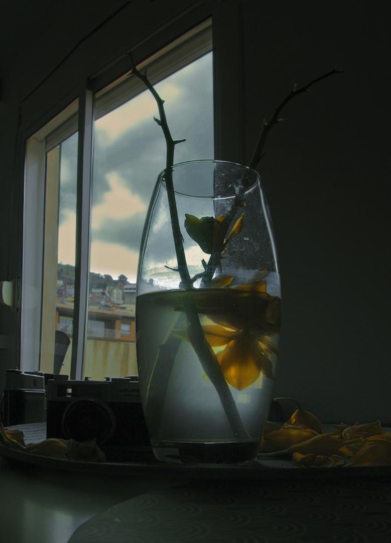 """""""El pequeño jarrón de María""""       para Jorge Rodriguez Mesias"""