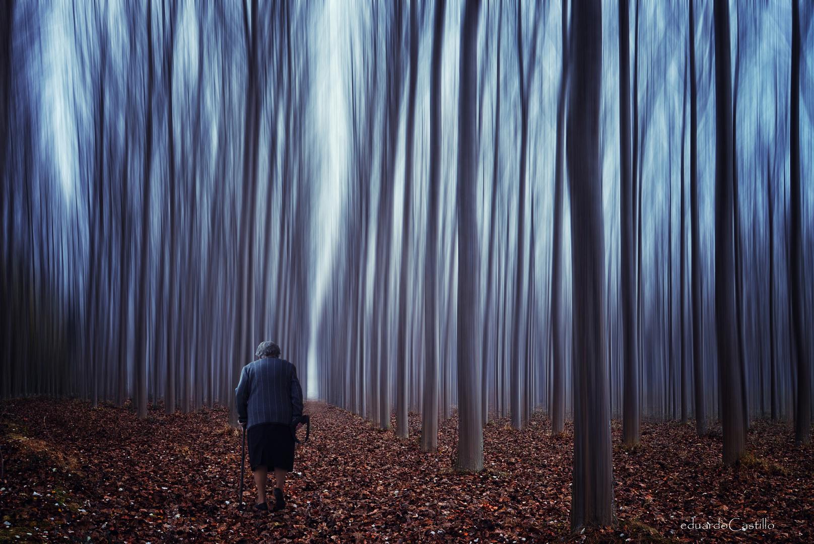El profundo espacio de la soledad