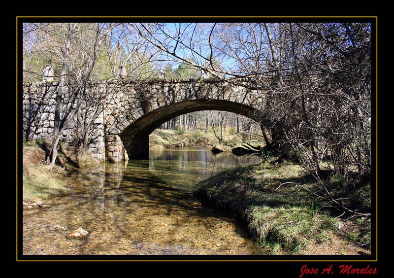 El Puente 2
