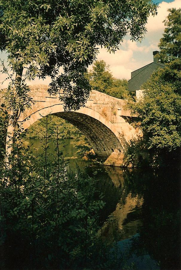 El puente casi oculto