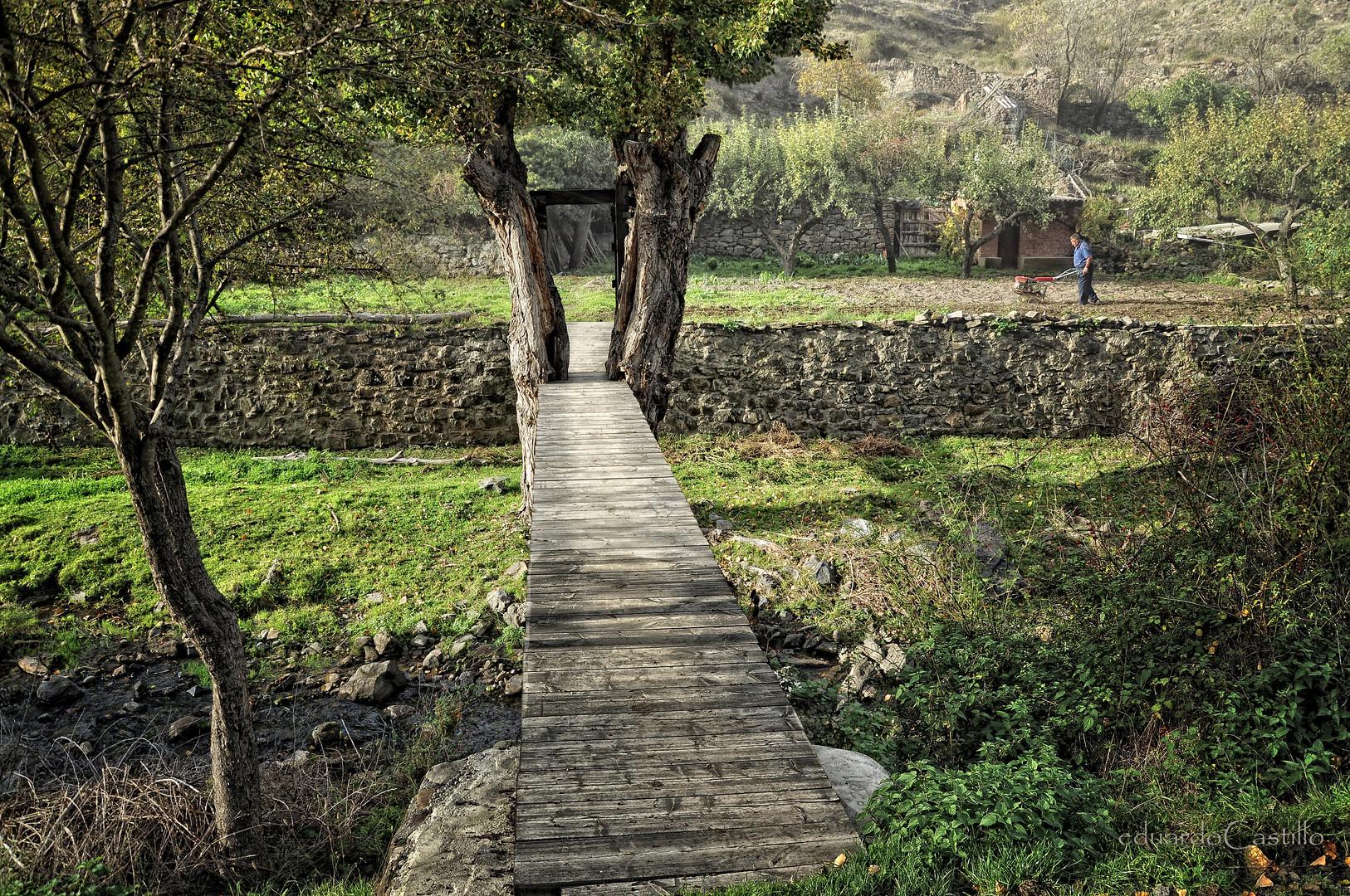 El puente y el río