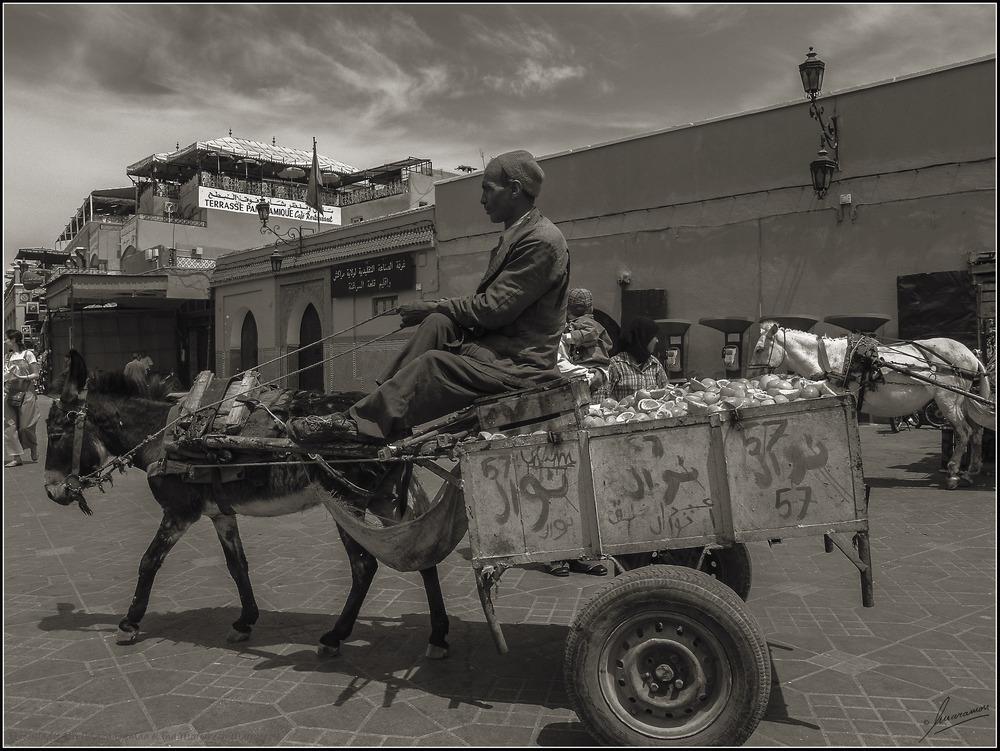El reciclador BN (Plaza Djemaa el Fna Marrakech Marruecos)