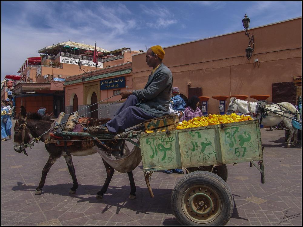 El reciclador (Plaza Djemaa el Fna Marrakech Marruecos)