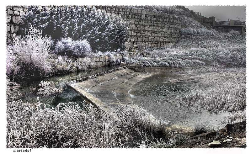 El Río Arba de Luesía Ejea de los Caballeros (Aragón)