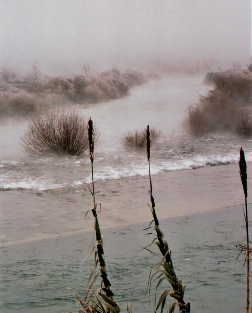 El río Cinca con niebla, un 28 de diciembre a -3º