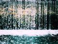 el rio llora... de shanela