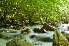 el rio suena