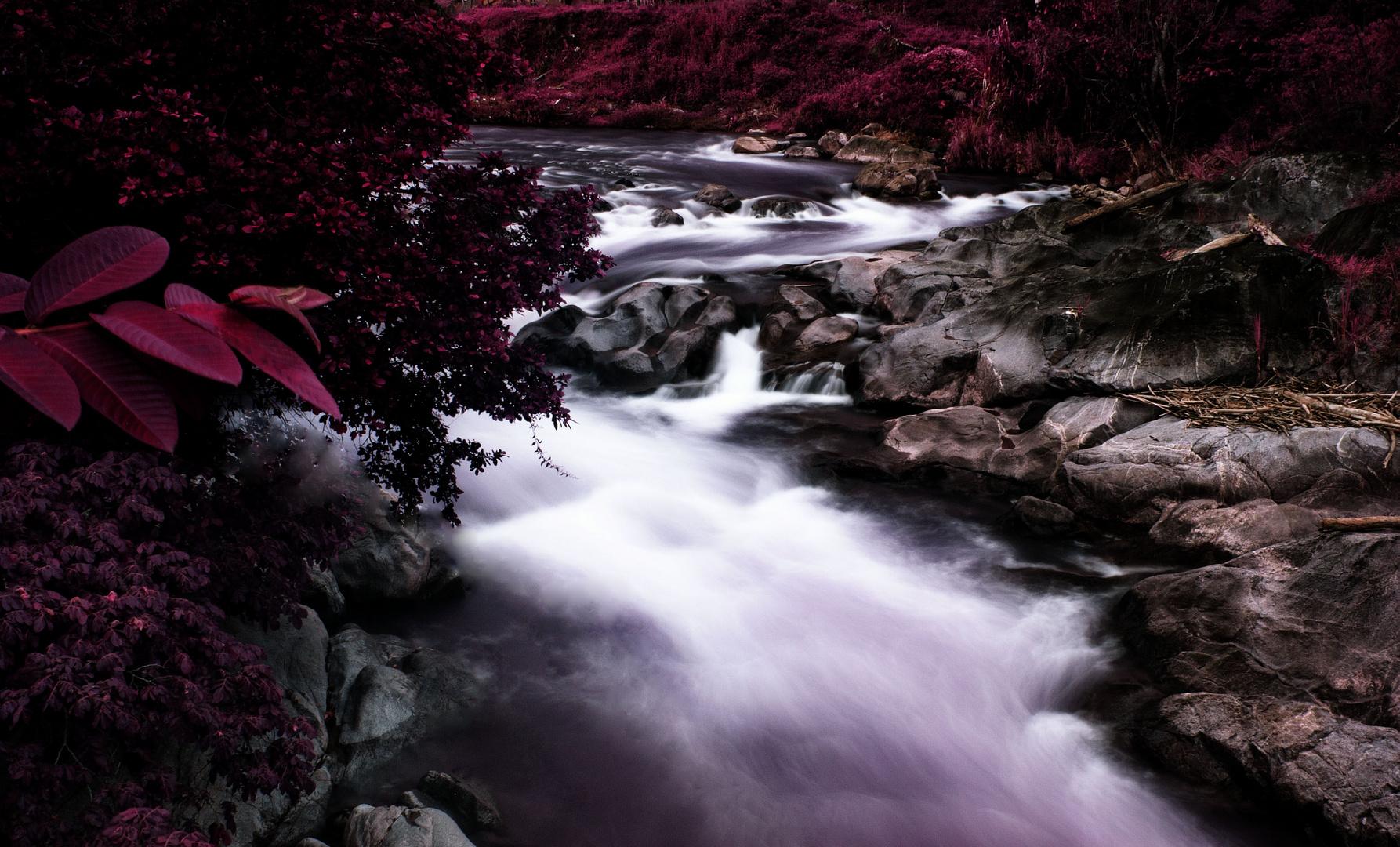 el rio tiene cor,