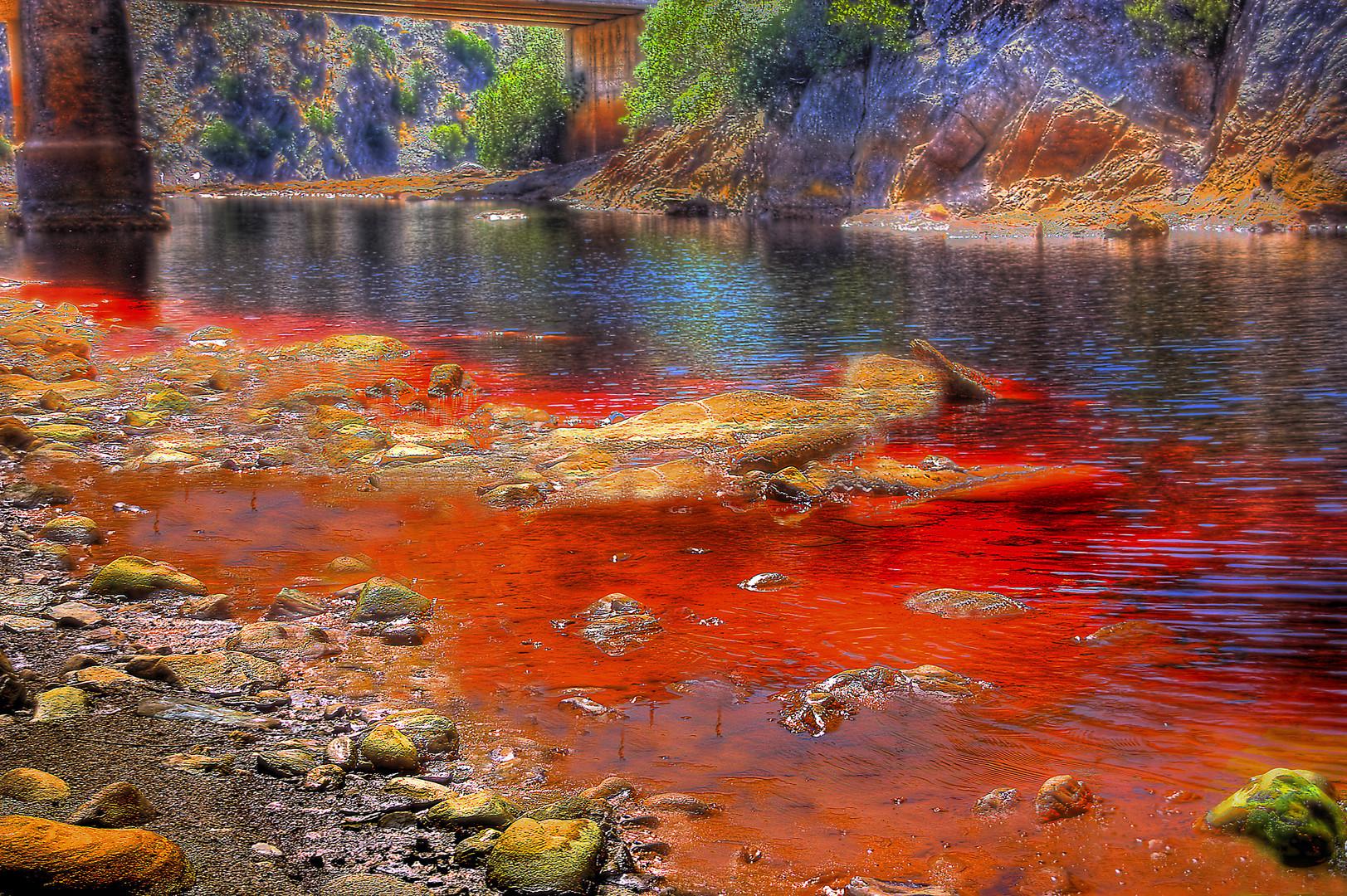 El rio Tinto en agosto