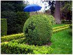 El seto con paraguas