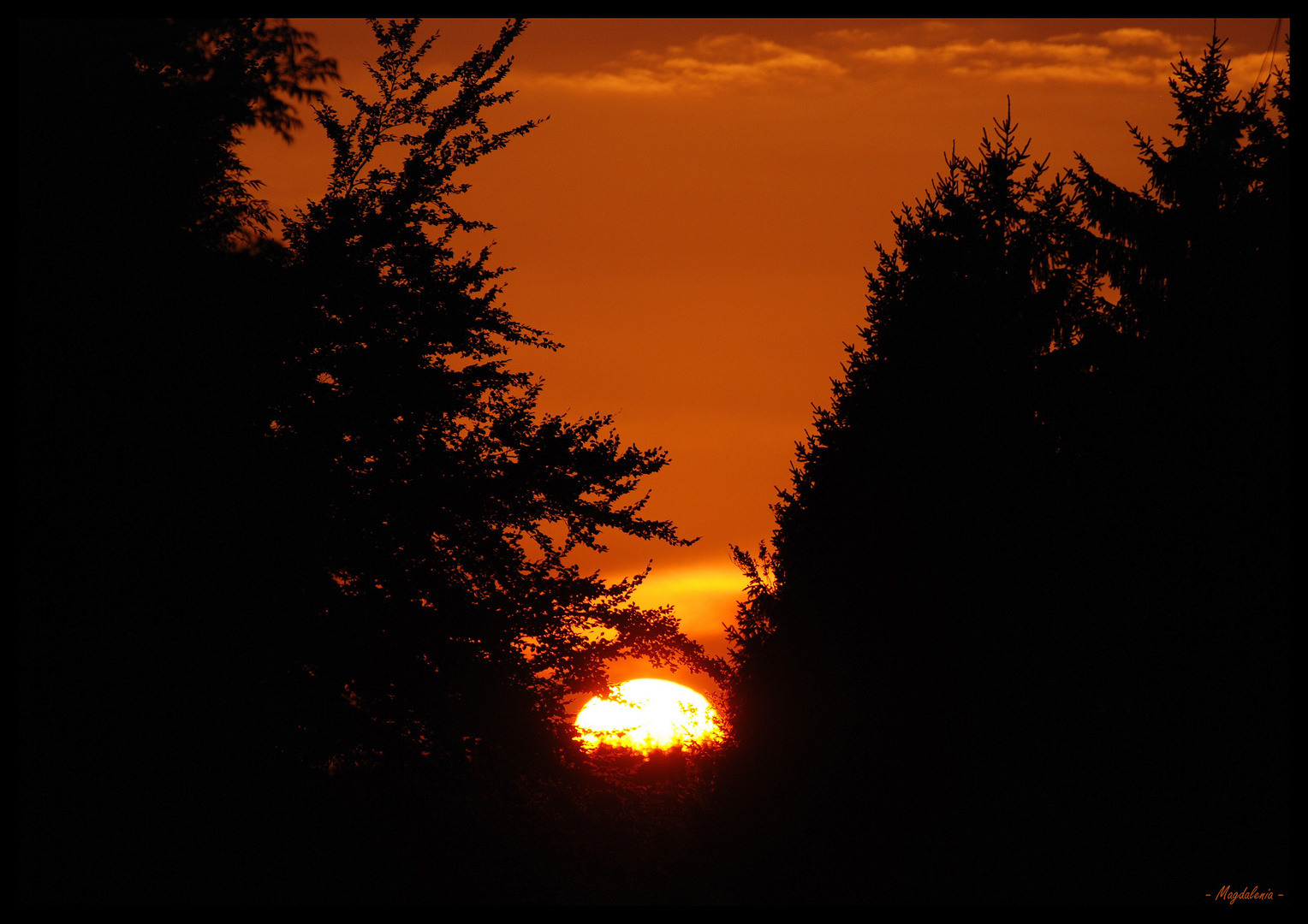 El sol, mi amor