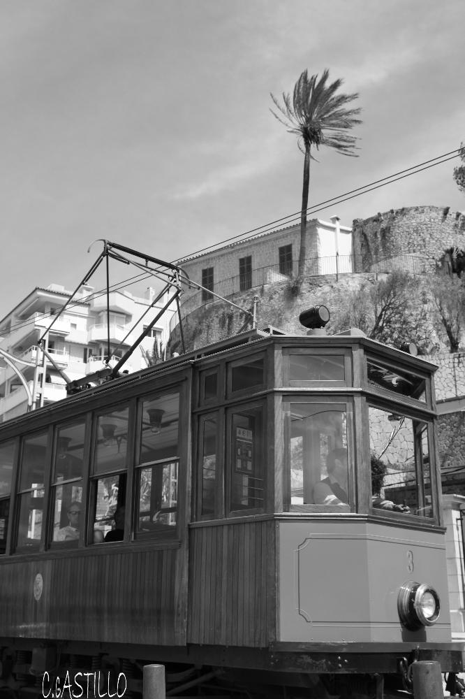 El Tren de Soller y la Plamera al Viento