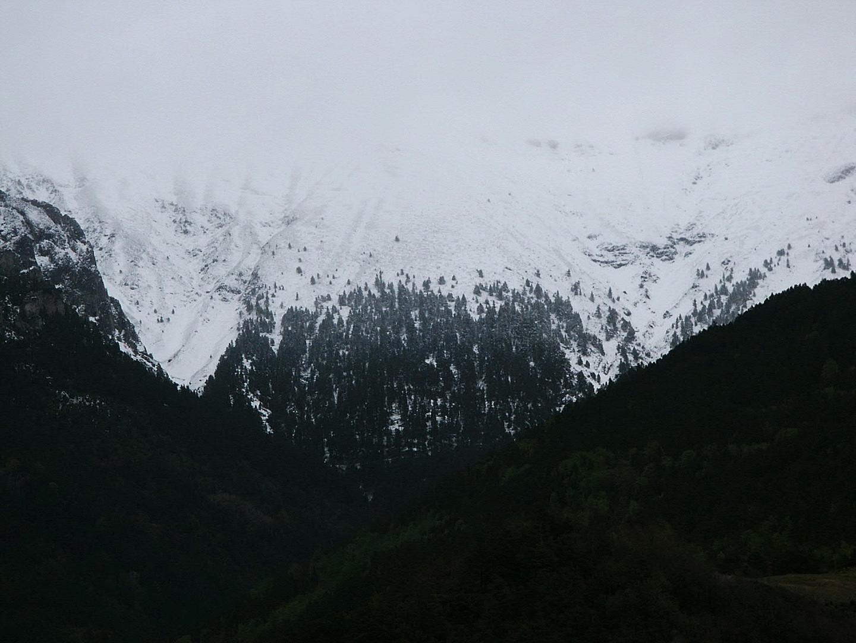 El verde invierno...2