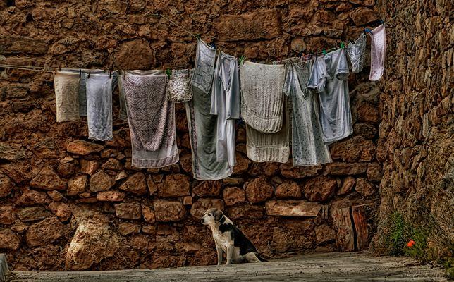 El vigilante de las toallas