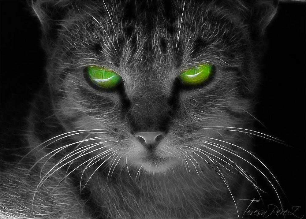 el vigilante nocturno