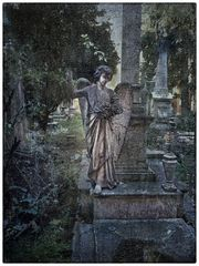 elaborazione del lutto