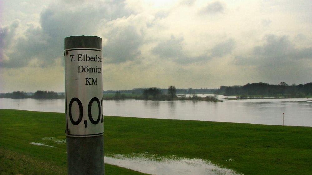Elbdeich