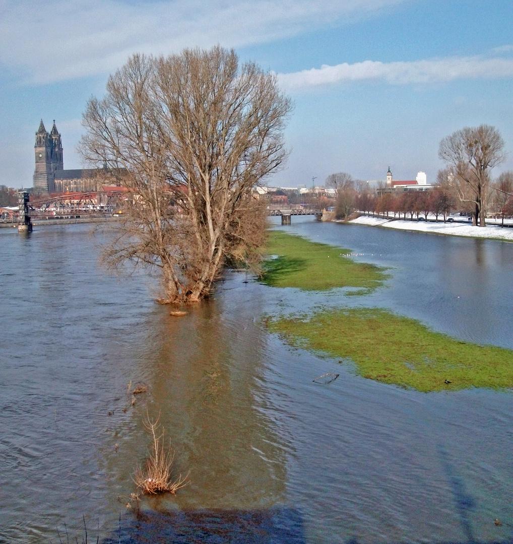 Elbe (2)