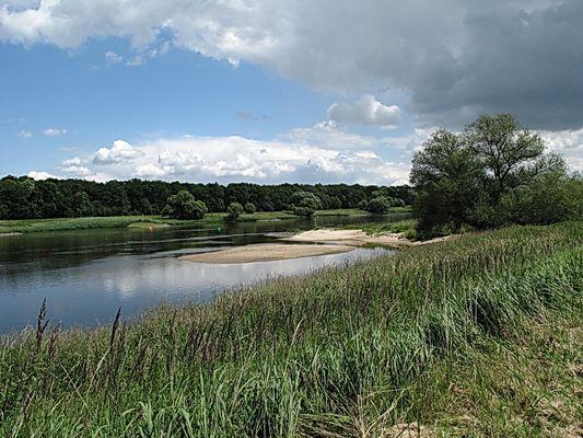 Elbe bei Breitenhagen / Sachsen-Anhalt