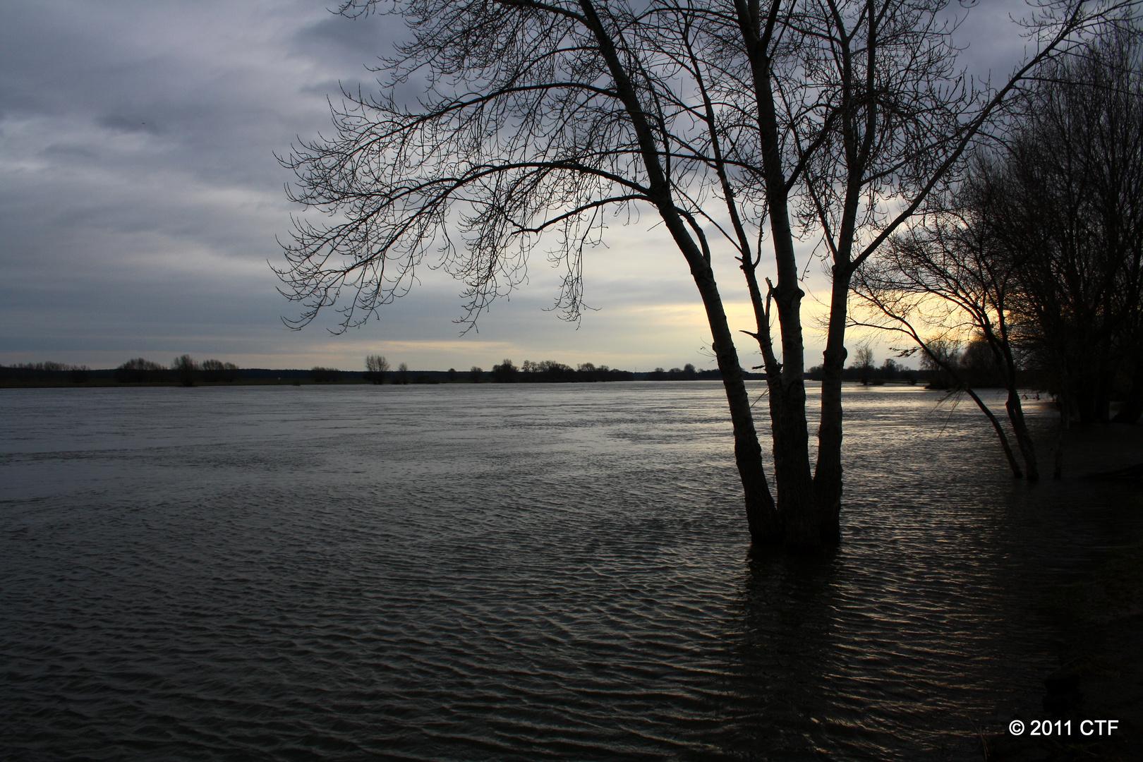 Elbe - Hochwasser