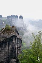 Elbsandsteingebirge im Nebel 2