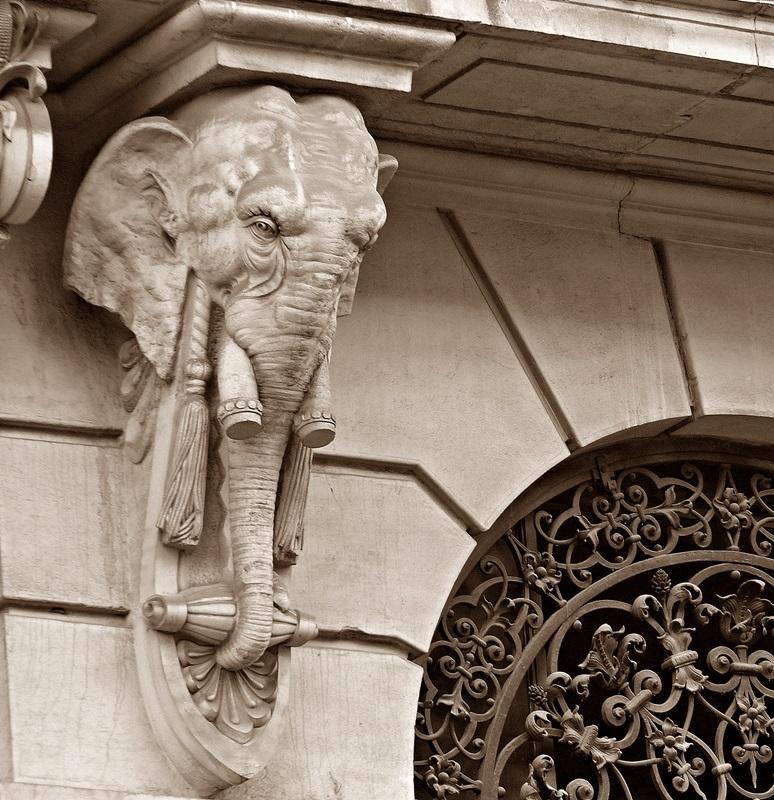 Elefant----