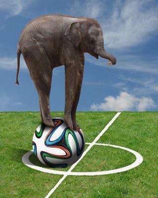 Elefant als Ballkünstler (Digiart Challenge 99)