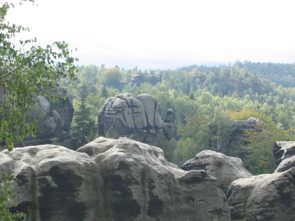 Elefant in Fels