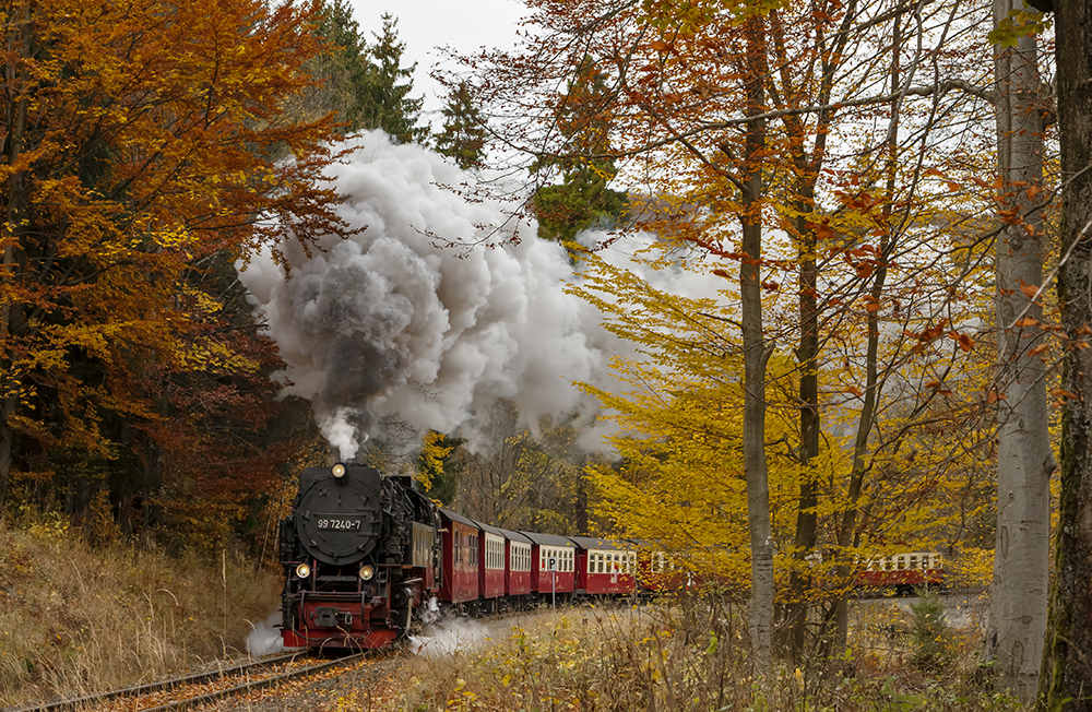 Elend im Herbst