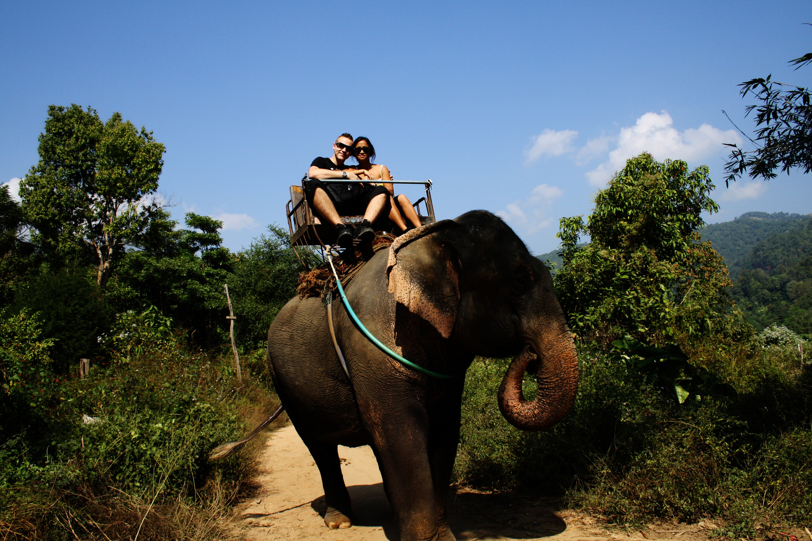 Elephant ride at Chiang Mai