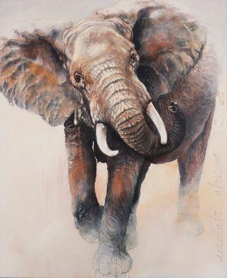 éléphante excédée chargeant le 4/4, pour protéger son petit