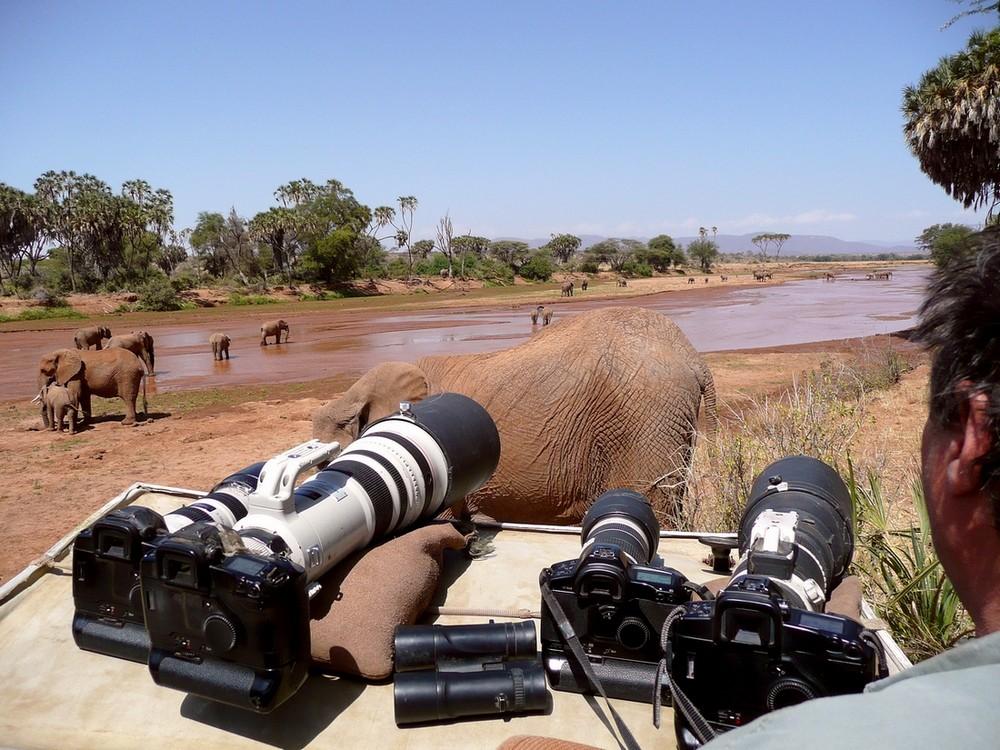 Eléphants - Samburu / Kenya - Armés comme un porte-avions ! L'envers du décor ...