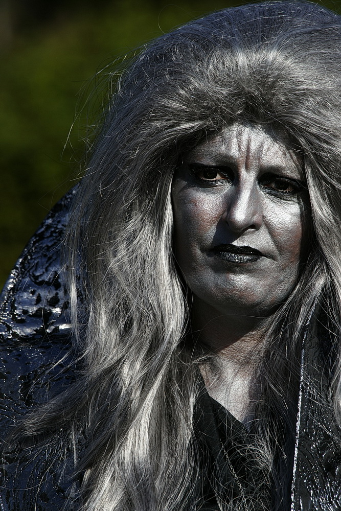Elfia Arcen 2013 01