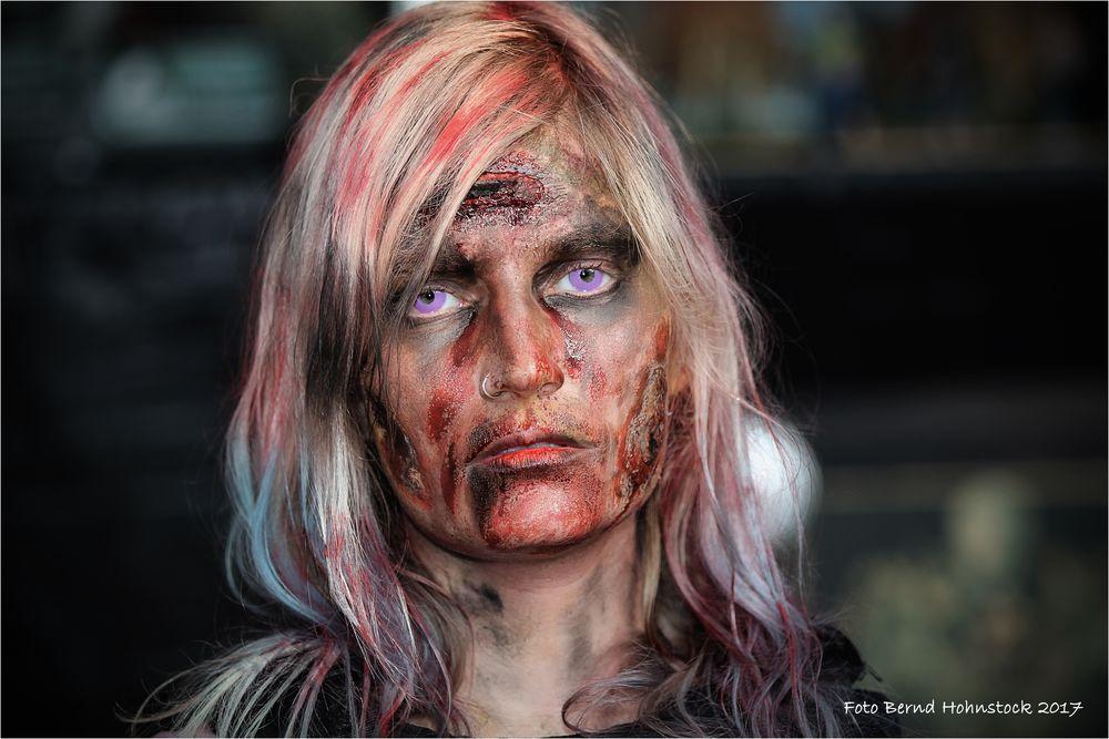 Elfia Arcen 2017 ......