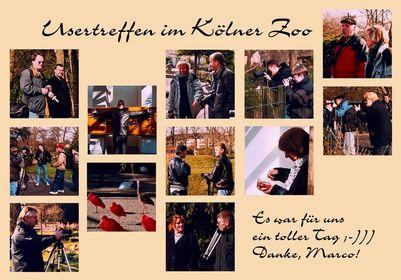 Usertreffen Köln/Zoo