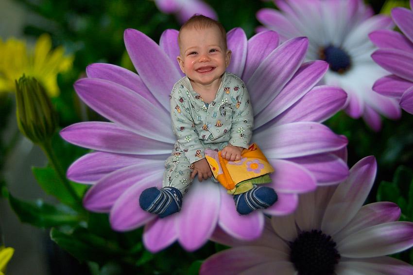 Eli in der Blume