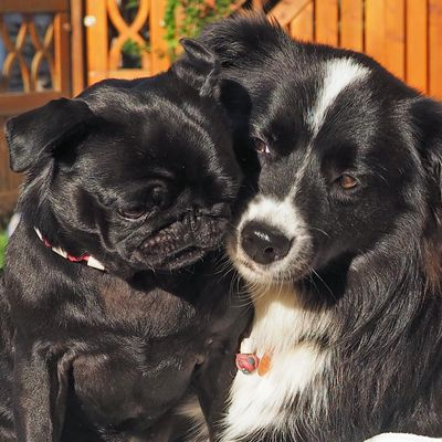 Ella und Zoe