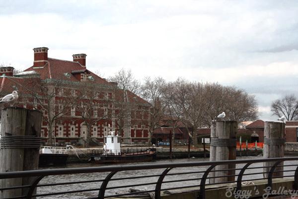 Ellis Island 3