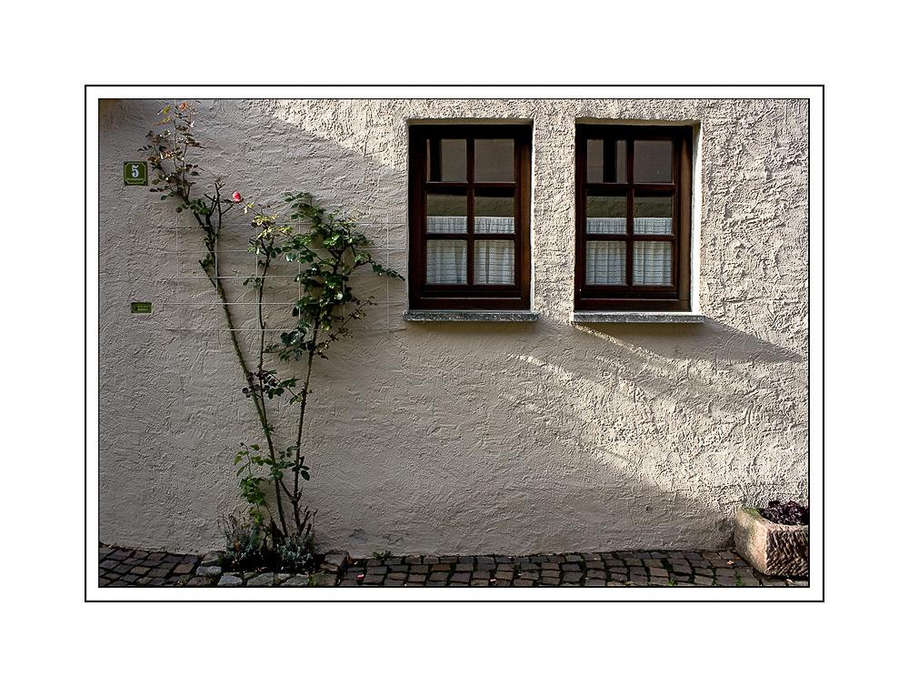 Eltville am Rhein - Rosenstadt