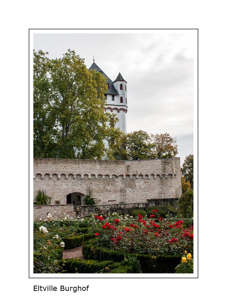 Eltville - Burghof II