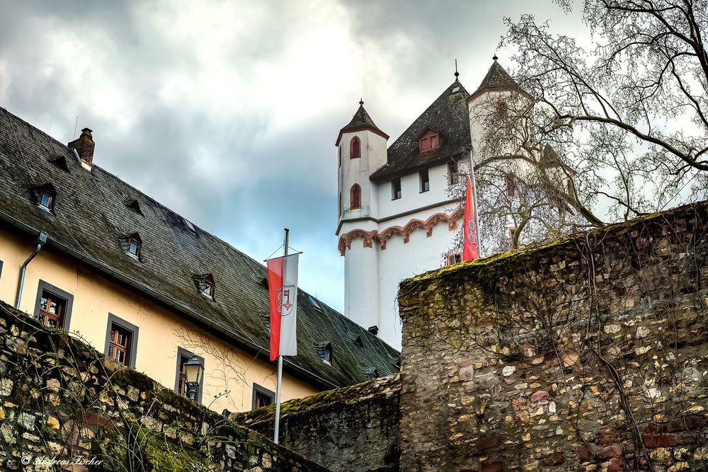 Eltville - Kurfürstliche Burg - 1. April 2016