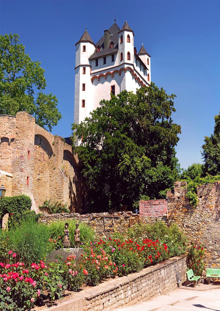 Eltville - Kurfürstliche Burg mit Rosengarten