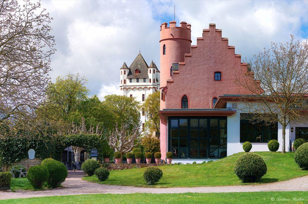 Eltville - Kurfürstliche Burg und Burg Crass - 26. April 2016