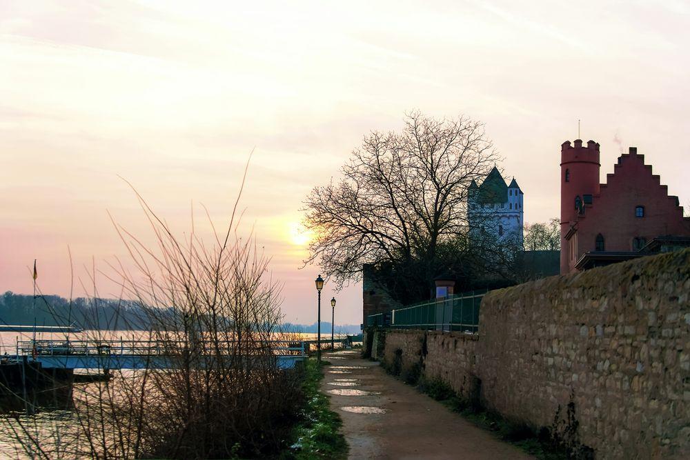 Eltville - Kurfürstliche Burg und Burg Crass bei Sonnenuntergang