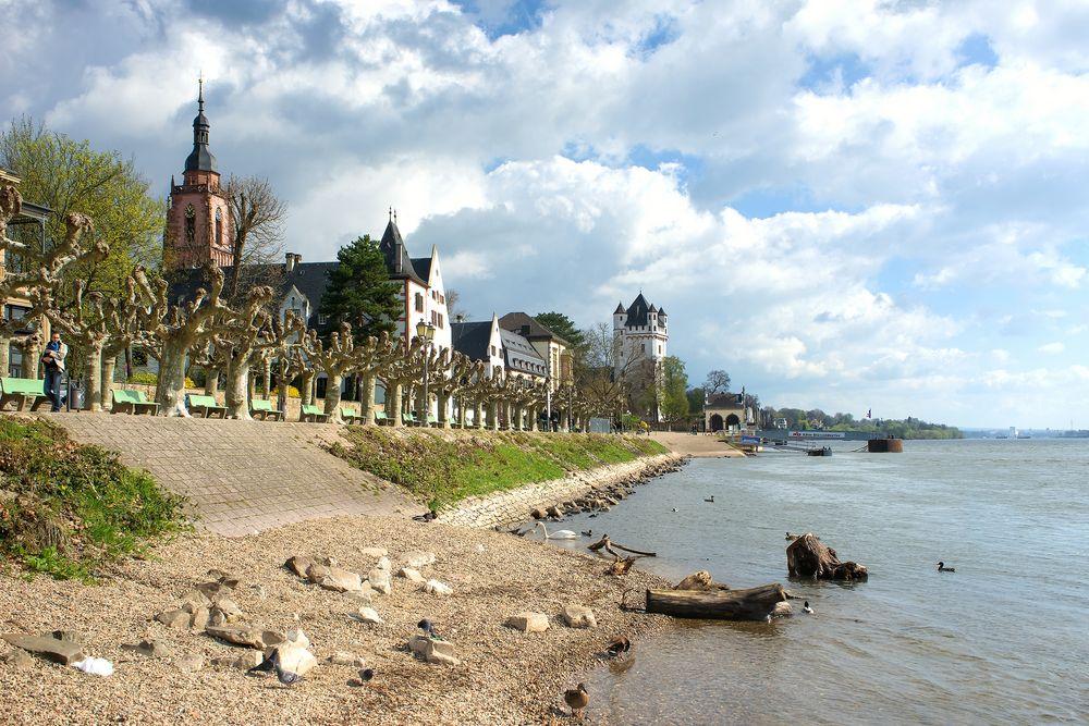 Eltville - Rheinuferpromenade - 6. April 2016