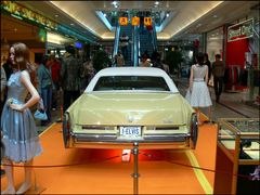 Elvis' letzter Cadillac - Bild 2