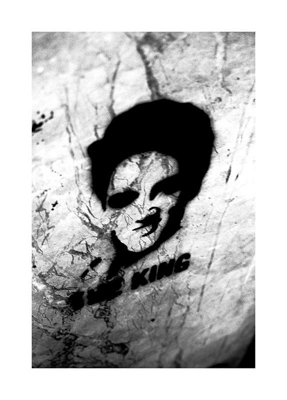 Elvis - the pelvis