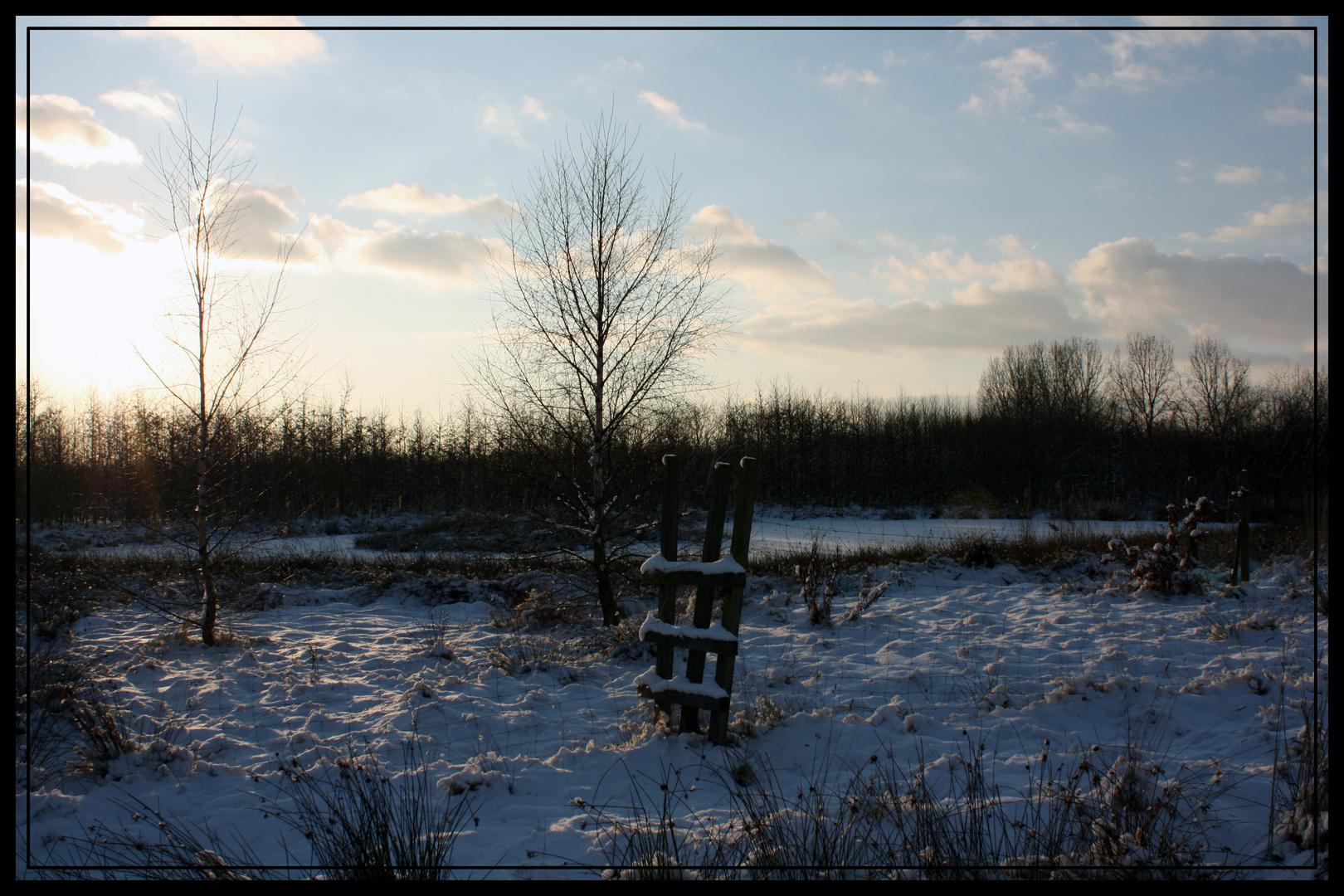 Emder Stadtwald im Winter